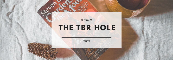 Down the TBR Hole #19